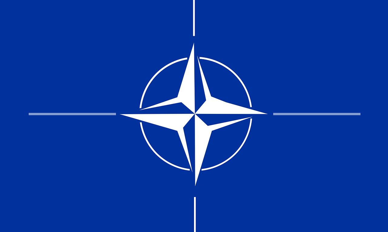 manuel santoro convergenza socialista socialismo NATO